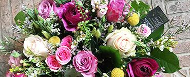 visuel prestation Compositions & bouquets